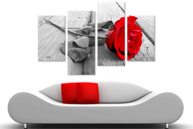 Red rose black and white 44983